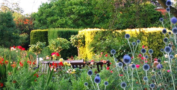 Image of the Walled Garden at Brockwell Park.; two park benches surrounded by flowering plants and hedges.