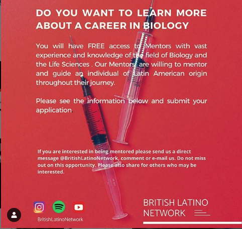 British Latino Network mentoring flyer