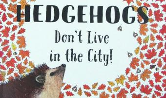 Hedgehogs Don't Live in the City flyer