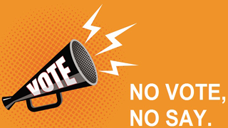 Image of loud speak with vote written on side. Message being shouted is No vote, no say.
