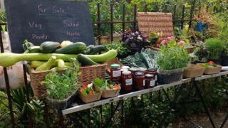 Bandstand beds raised funds for new paths by selling produce
